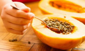 Start Eating Papaya Seeds Right Now – There Are Magical Cure For Gut, Liver, Kidney, Cancer And For More Other Diseases